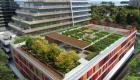 Eau Du Soleil Community Garden Rendering True Condos