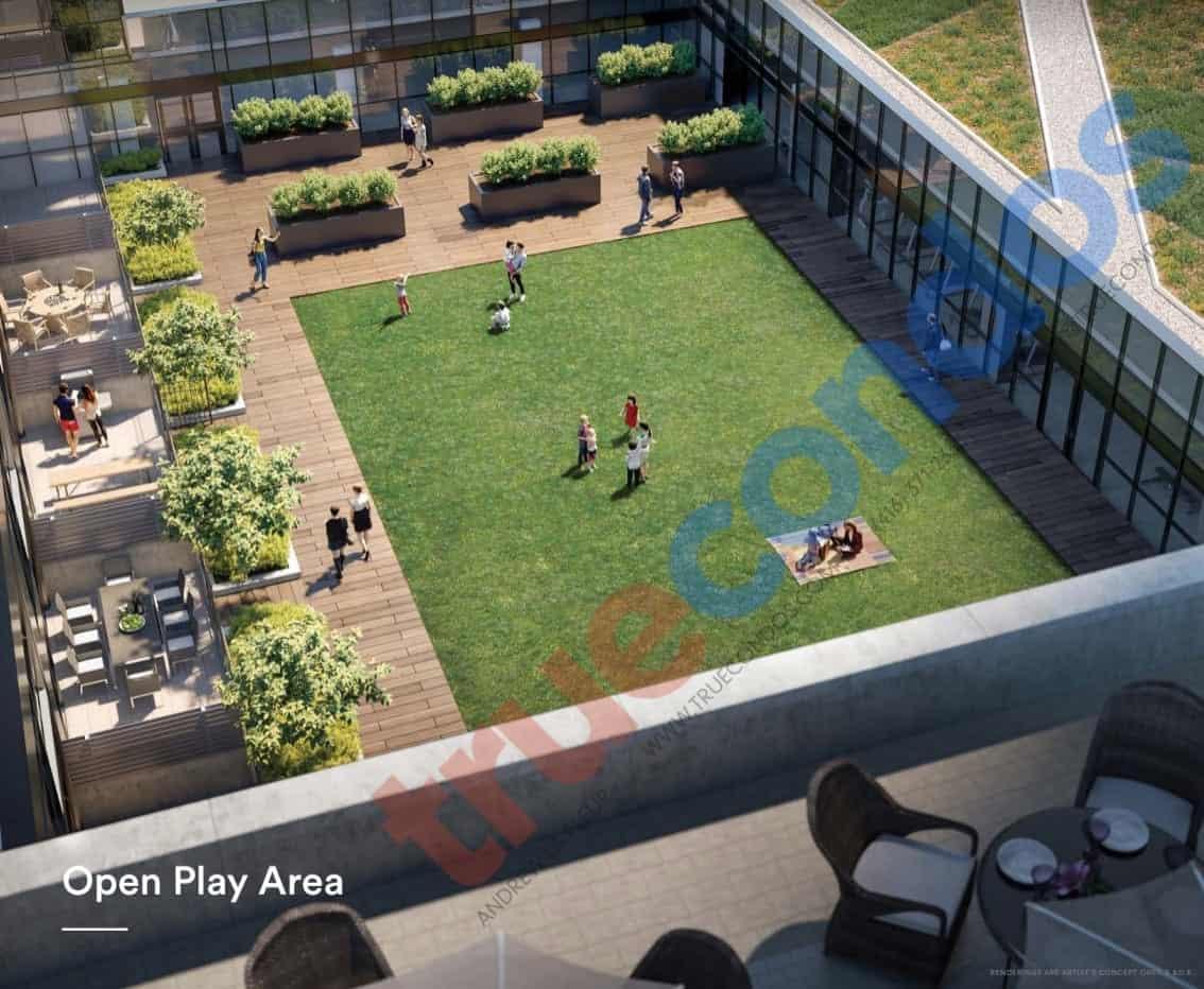 Avia Condos Open Play Area Amenities True Condos