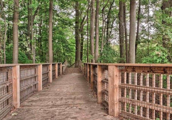 New Condos Mississauga Parks True Condos